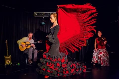 Das Flamenco Duo und Trio aus Würzburg (14)