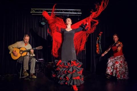 Das Flamenco Duo und Trio aus Würzburg (1)
