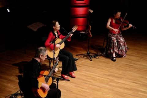 Das Flamenco Duo und Trio aus Würzburg (8)