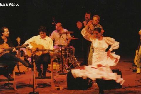 Der Kölner Flamencogitarrist (1)