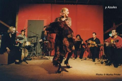 Der Kölner Flamencogitarrist (10)