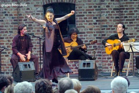 Der Kölner Flamencogitarrist (3)