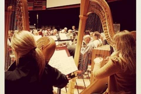 Die Harfenistin aus dem Westen (9)