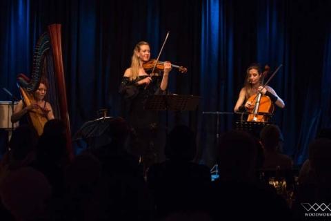 Die Magie der Geige Soloviolinistin (8)