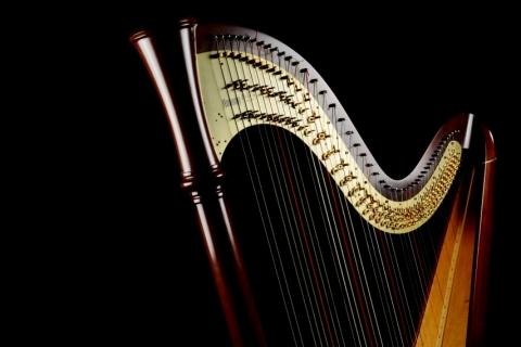 Die vielseitige Harfenistin Krystyna