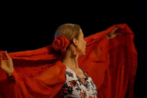 Workshop Flamencotanz aus Würzburg (1)