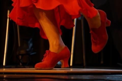 Workshop Flamencotanz aus Würzburg (3)